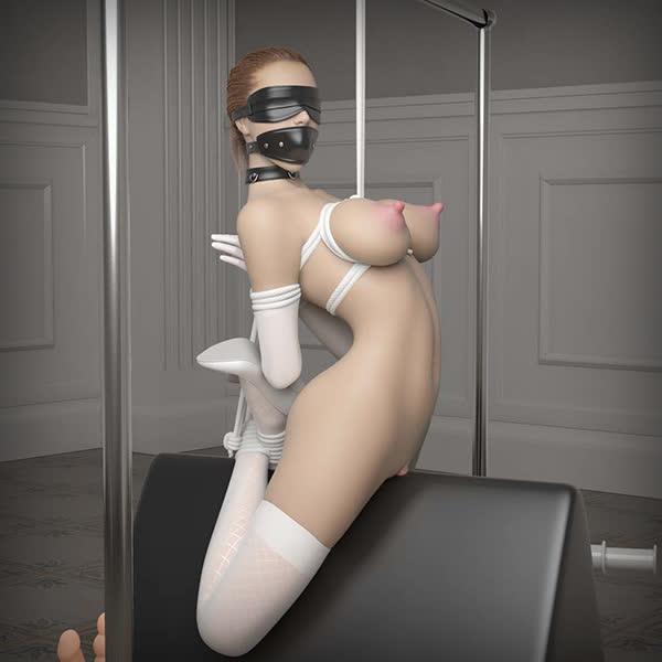 Image de jeu BDSM 2